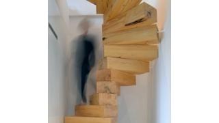 Spiralne stepenice napravljene od natur drveta